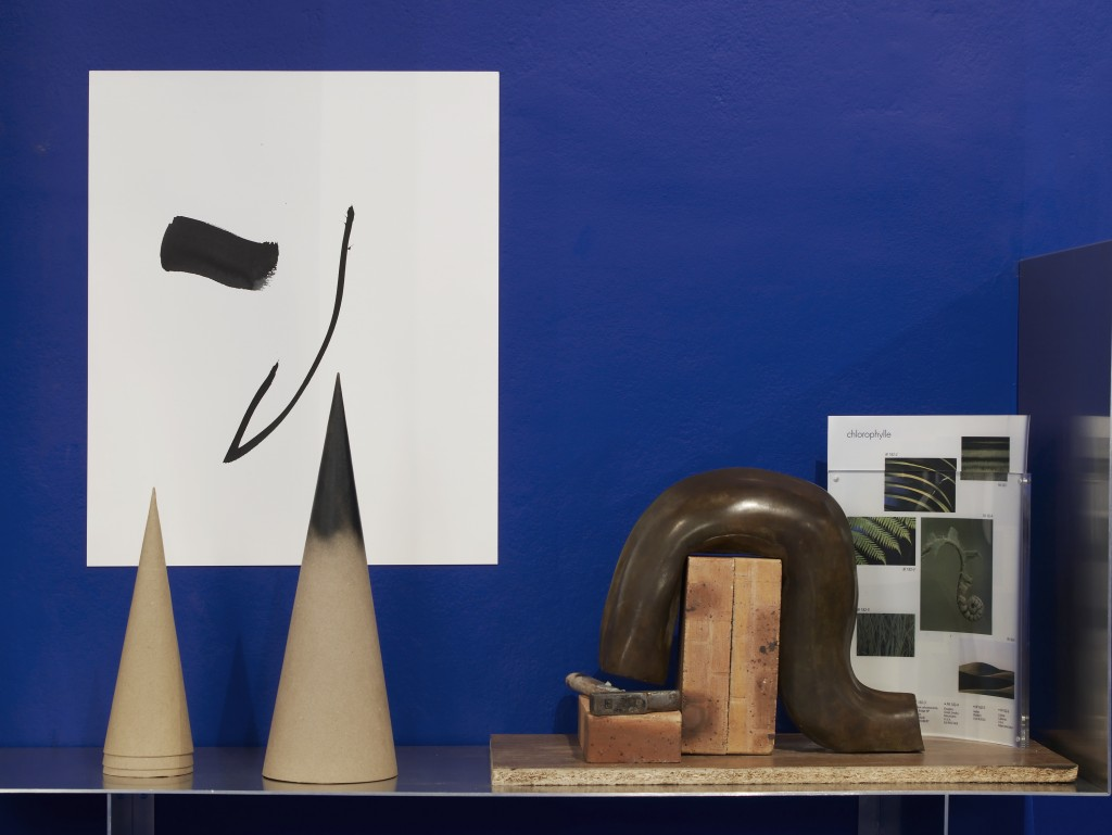 Camille Henrot at Chisenhale Gallery_Andy Keate_05